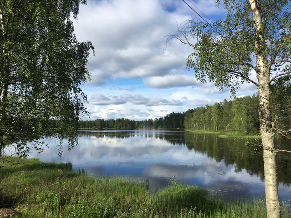 Birch forests and lakes are the main landscape in central Finland